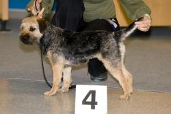 Víkendový výcvik loveckých psů, 23. - 25. 4. 2010, Lučkovice