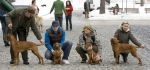 Meggie, Kris a jejich štěnda