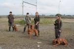 psy čeká velké pole...
