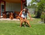 Timbo s Bárou